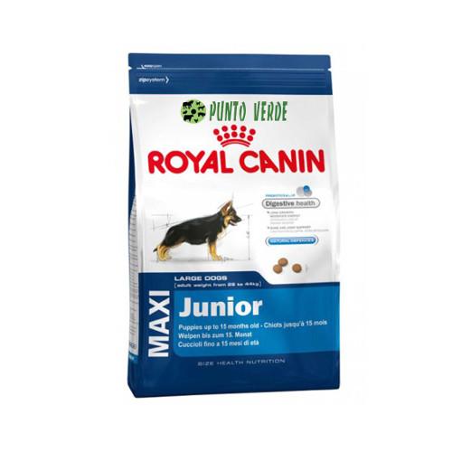 royal canin maxi junior kg 15. Black Bedroom Furniture Sets. Home Design Ideas